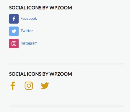 Social_Icons_by_WPZOOM_designs