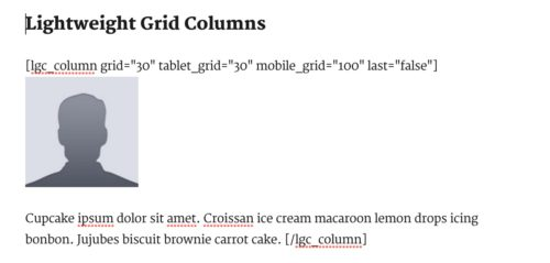 Lightweight Grid Columns WordPress plugin - shortcodes