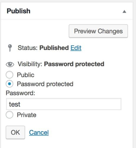 Create a password protected page in WordPress