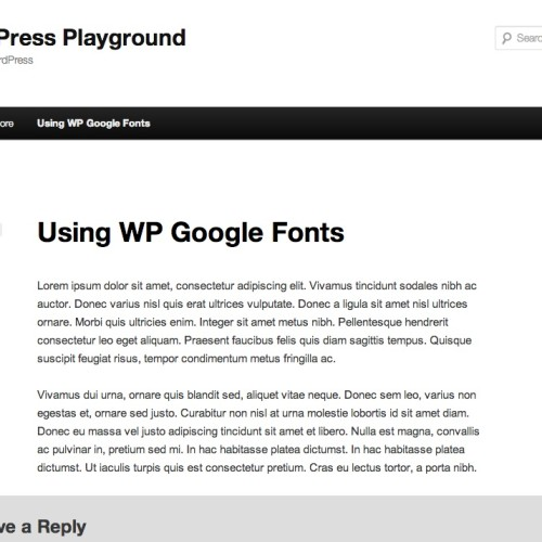 Using WP Google Fonts