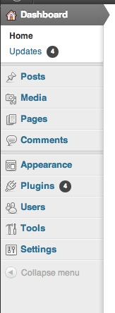 Core Features of WordPress - will exist regardless of theme