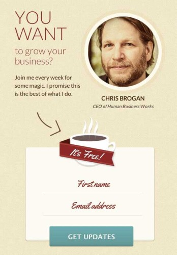 Chris Brogan Email Opt In Example