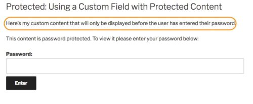 custom content on password protected post